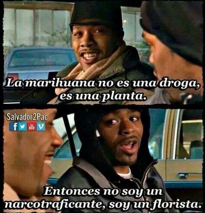 Florista - meme