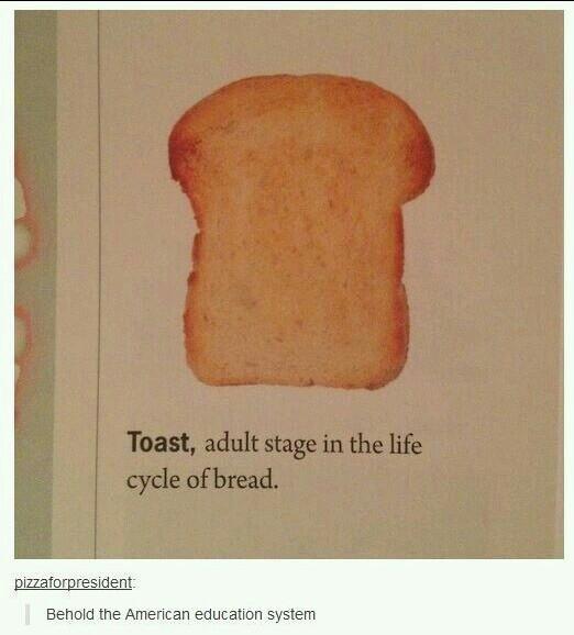 Toast - meme