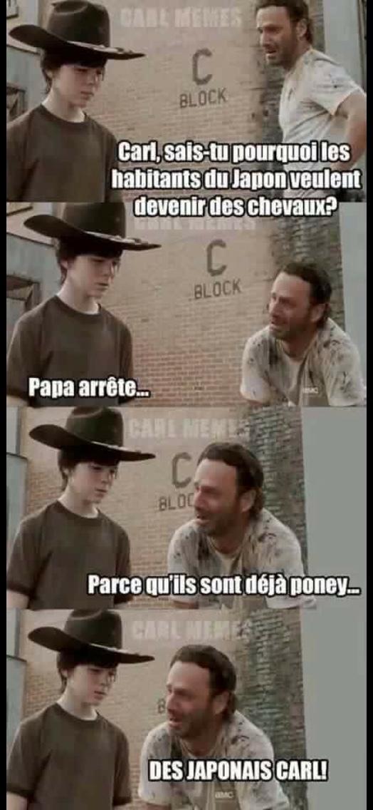 déjà poney Carl - meme