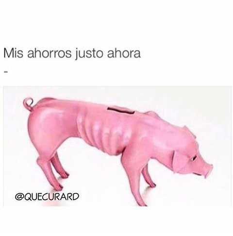 No money... - meme
