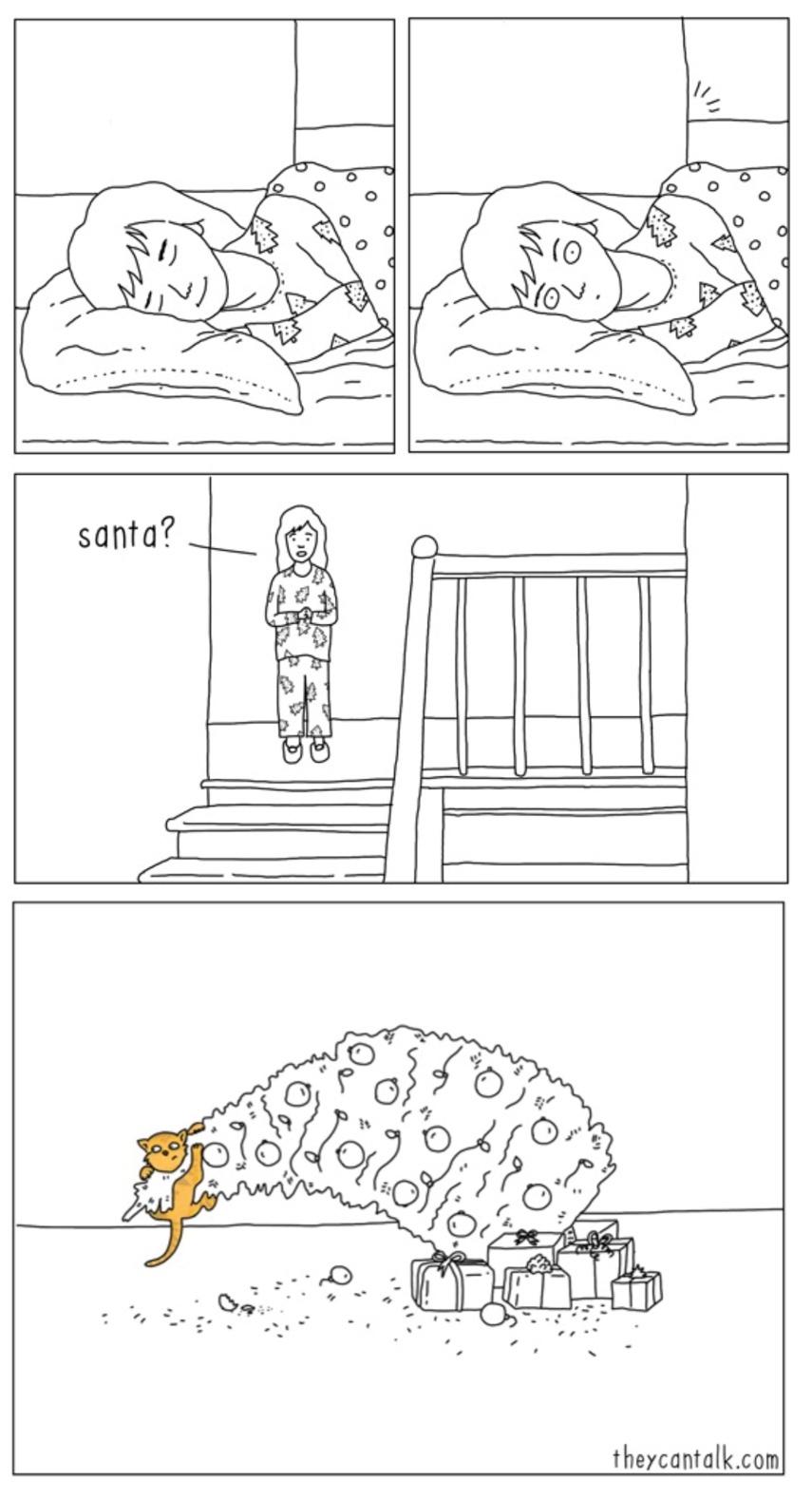 Cat-Claus - meme