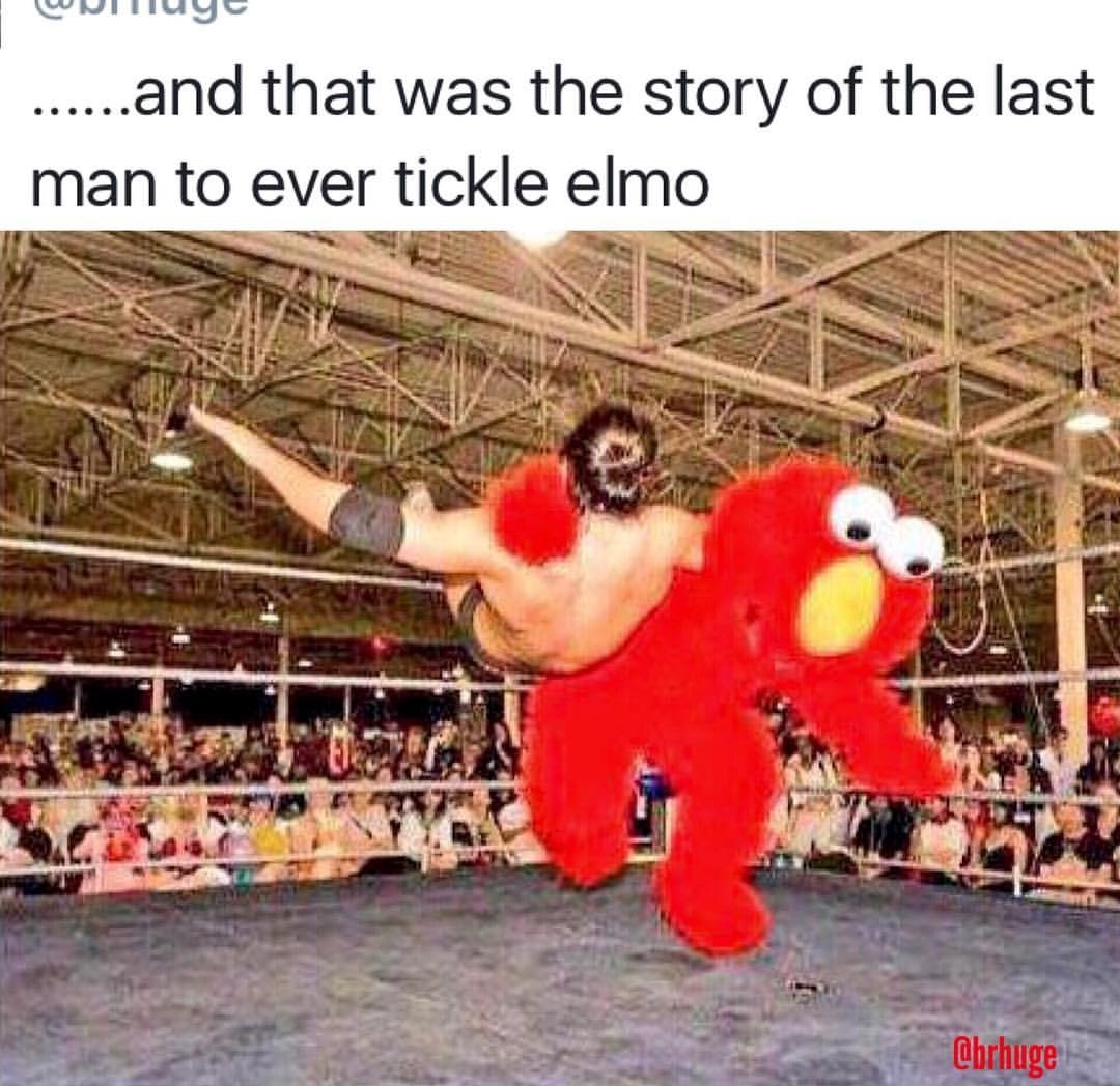 you're in Elmo's World Now Mofo - meme