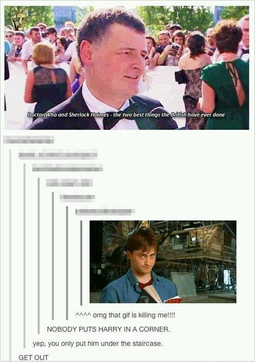 Nobody puts Harry in a corner - meme