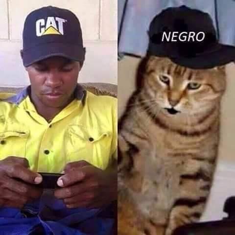 racismo ??? ..donde?? - meme