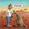 Kangarooed It (part 2)