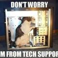 Cat support