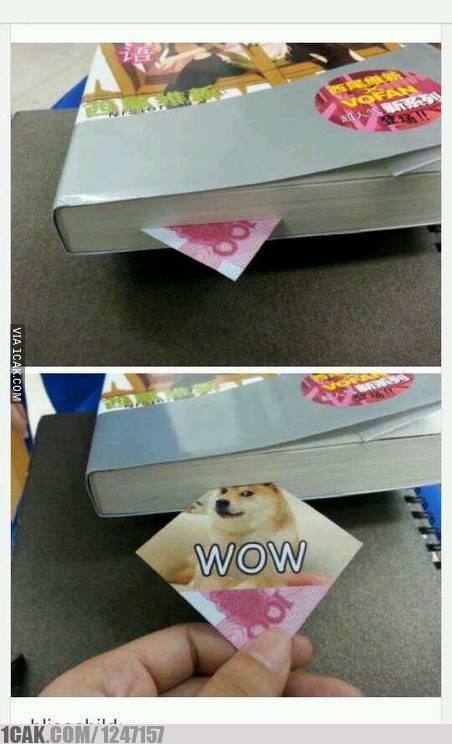 Wanna steal ma doge? - meme