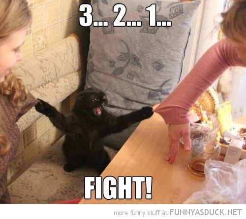 Fight Club ! ^^ - meme