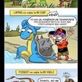 leyes absurdas de pokemon