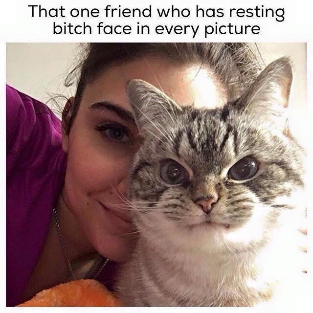 I am that friend - meme
