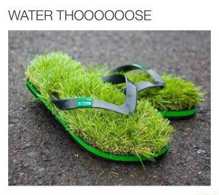 What are thoooose? - meme