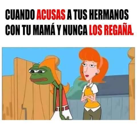 Pobre Pepe Candace :( - meme