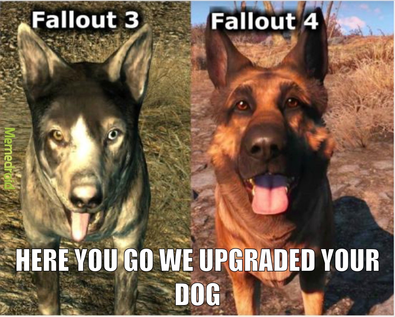 upgraded dogs - meme