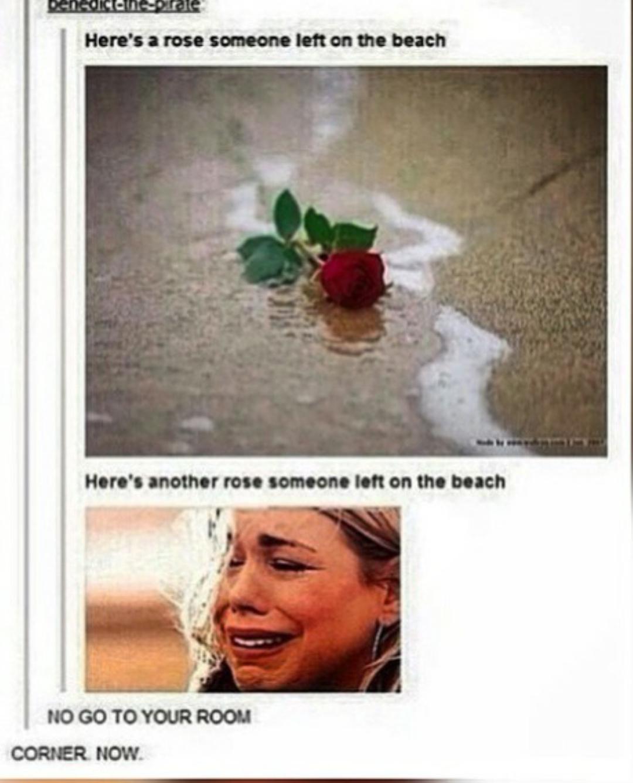 Rose.... - meme