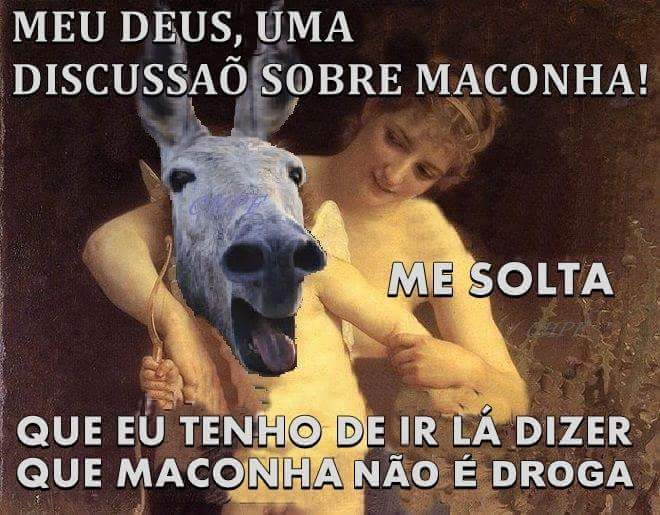 Zé maconha - meme