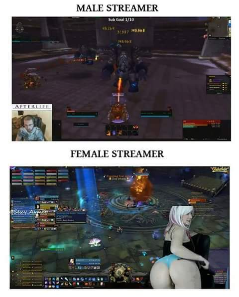 Twitch, paradise of boys - meme
