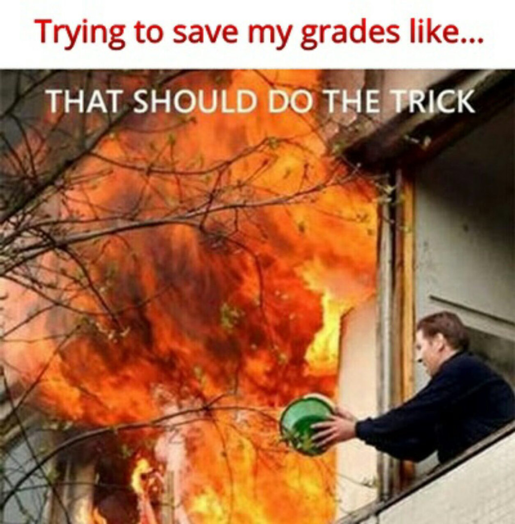Trying to save my grades like... - meme