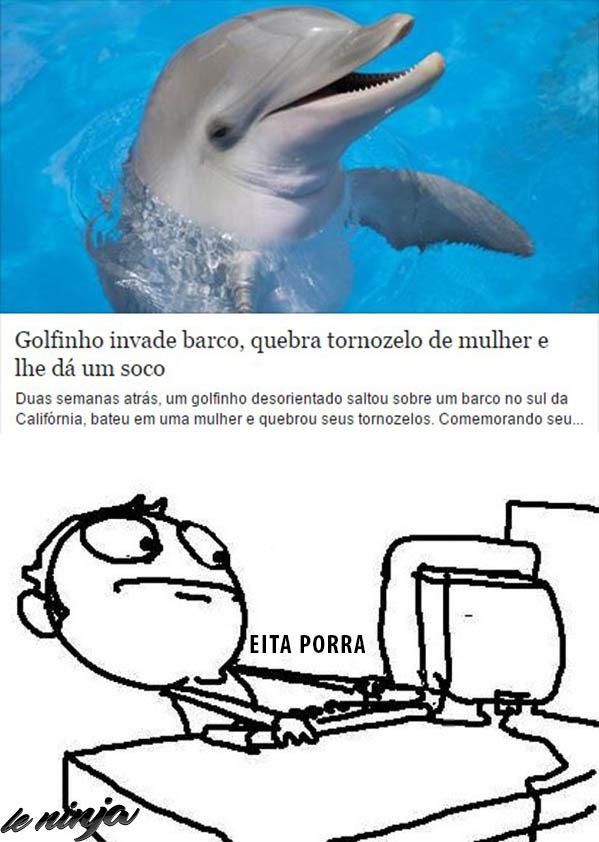 Golfinho rima com estupro - meme