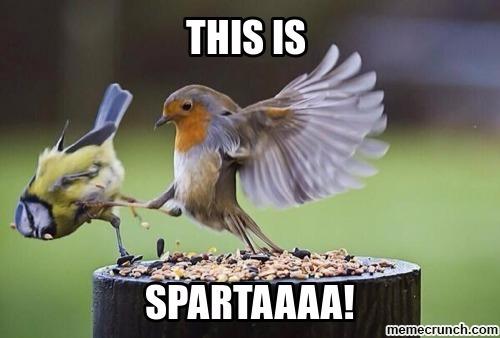 Sparta - meme