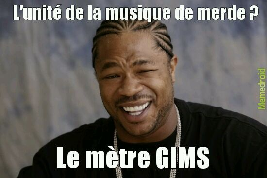 GIMS - meme