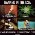 Legalize them