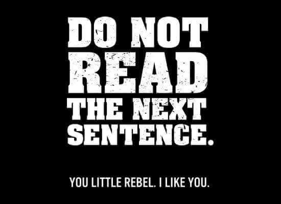 You little rebel - meme