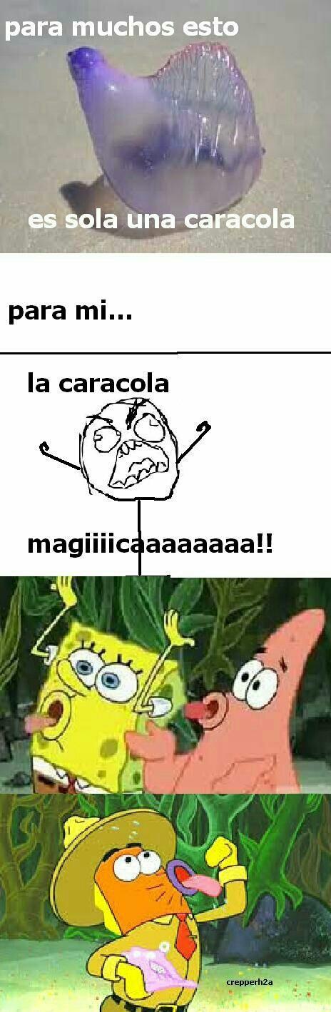 La caracola magica!!! :'D - meme