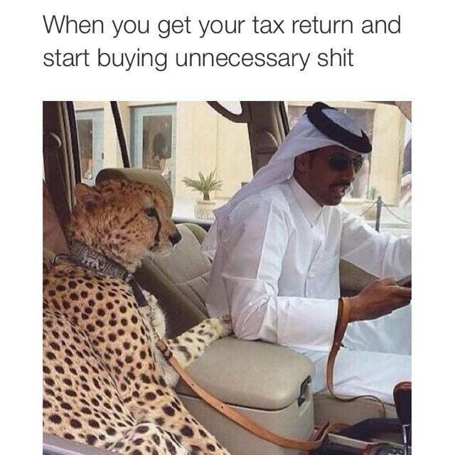 54ecedd2393cc come on tax refund let's buy a hamster meme by leonhunt ) memedroid