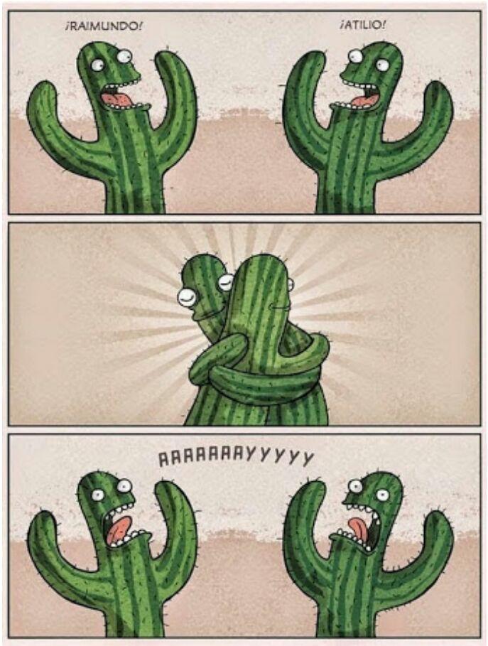 Desventajas de ser un cactus - meme