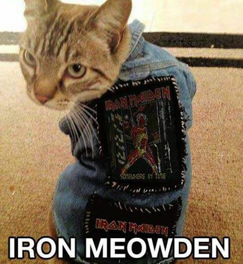 fav Maiden song? - meme