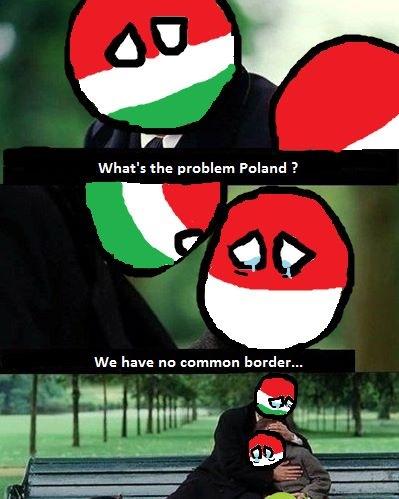 Poland & Hungary stronk! - meme