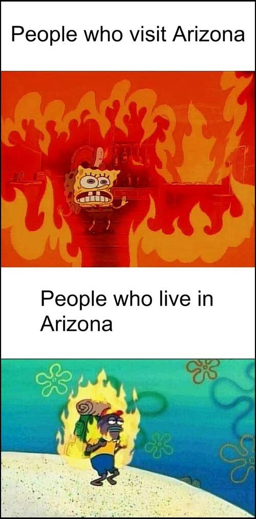 Arizonans Be Like... - meme
