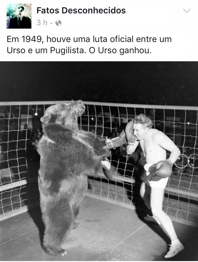 levou porrada :) - meme