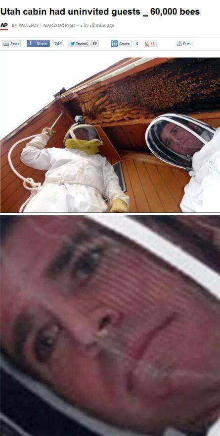 Fuckin bees - meme