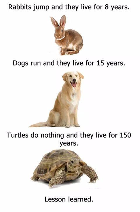 lesson learned... - meme