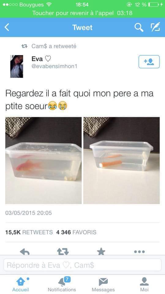 FleuryMichon Lel - meme