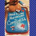 A friend became a nurse this was his cake