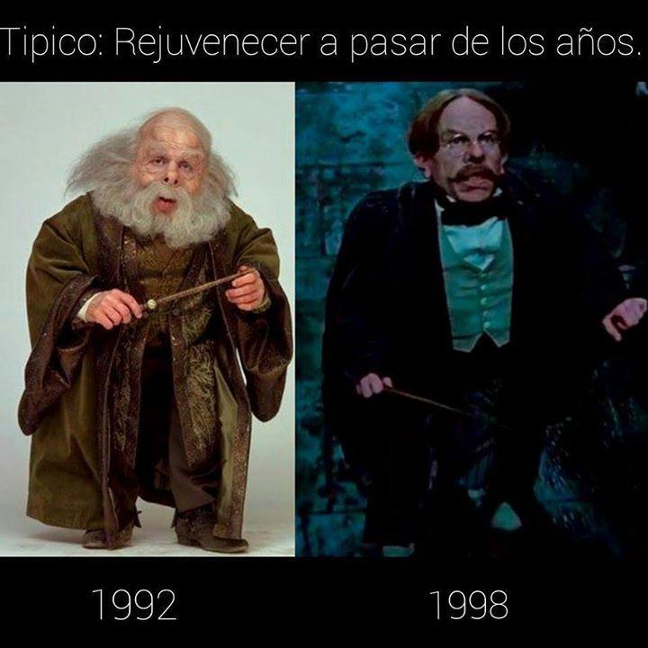 El extraño caso del profesor Flitwick xD - meme