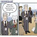 Business cat!!