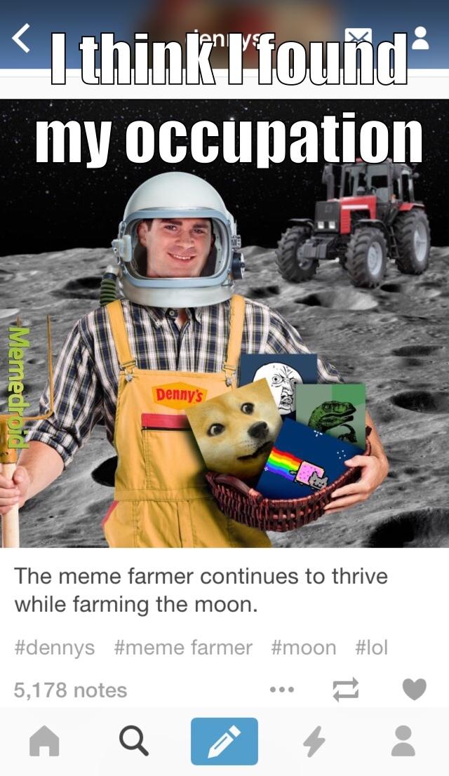 moon memes