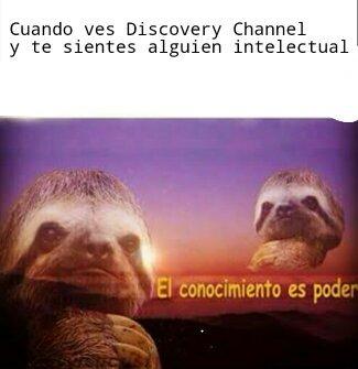 El conocimiento es rikura - meme
