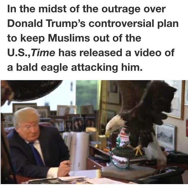 I praise this eagle - meme