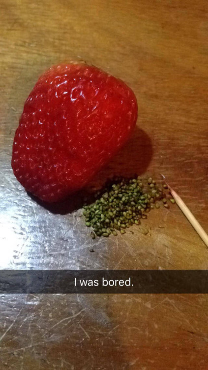 Estaba aburrido - meme