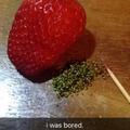 Estaba aburrido