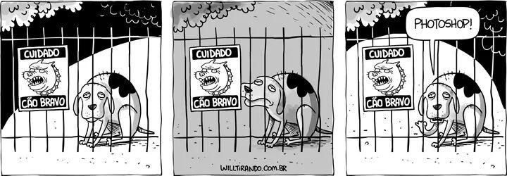 Cão que ladra... - meme