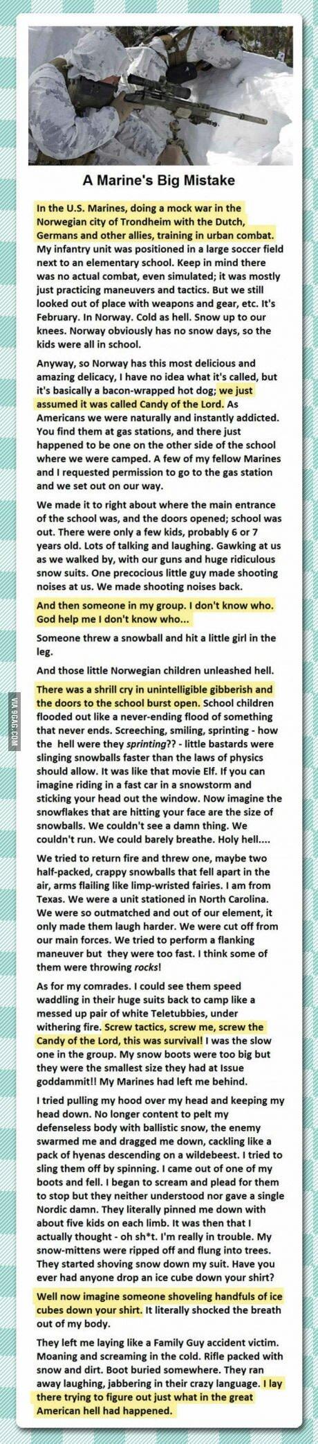 Norway bitches! - meme