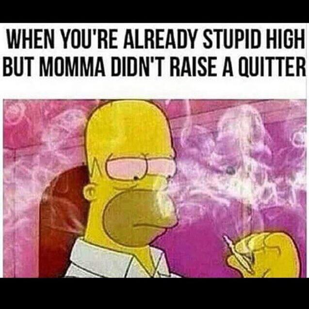 420 blaze it - meme