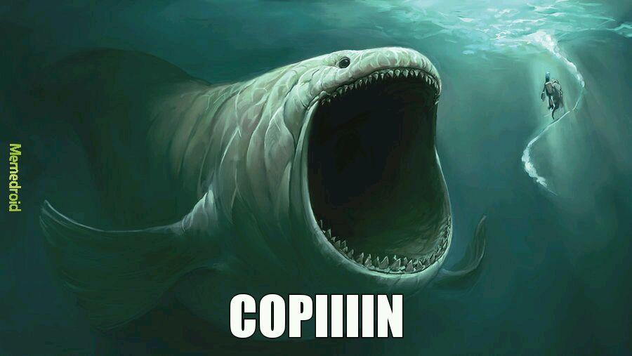 La tête du poisson mdr - meme