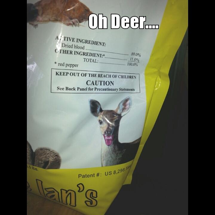 Oh Deer... - meme