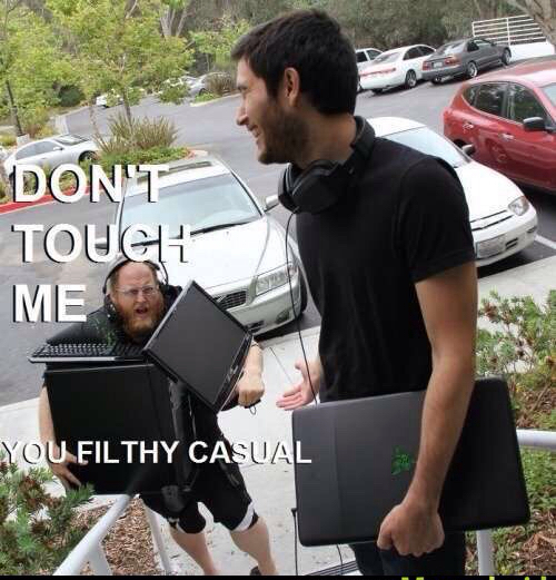 Filthy casuals - meme